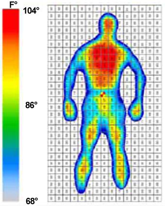Tactilus Mattress Pressure Mapping Matrix Based Tactile